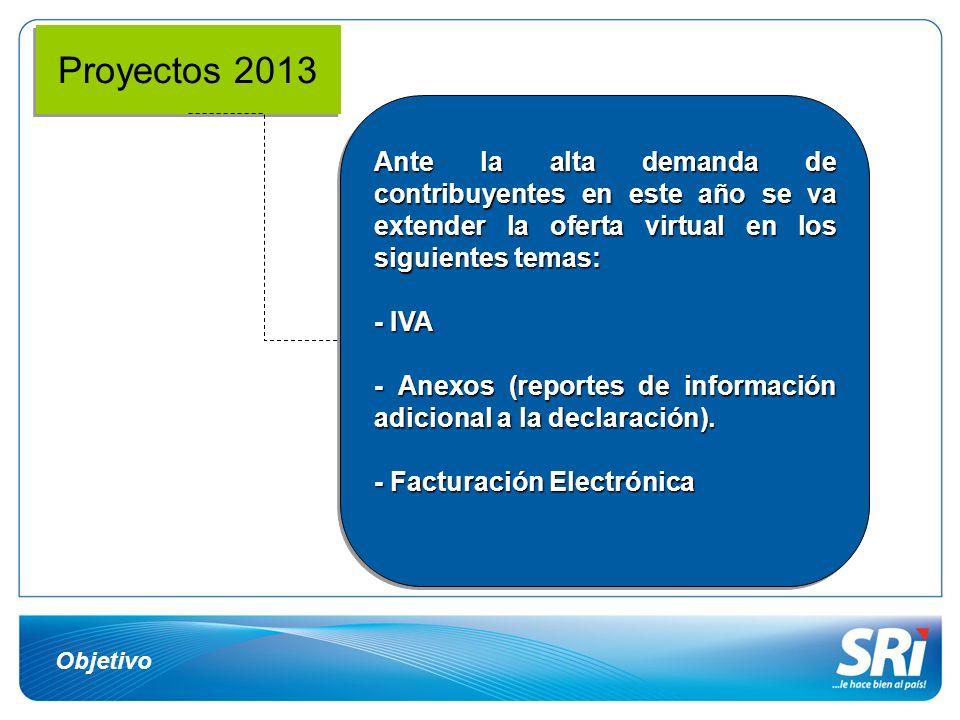 Objetivo Proyectos 2013 Ante la alta demanda de contribuyentes en este año se va extender la oferta virtual en los siguientes temas: - IVA - Anexos (r