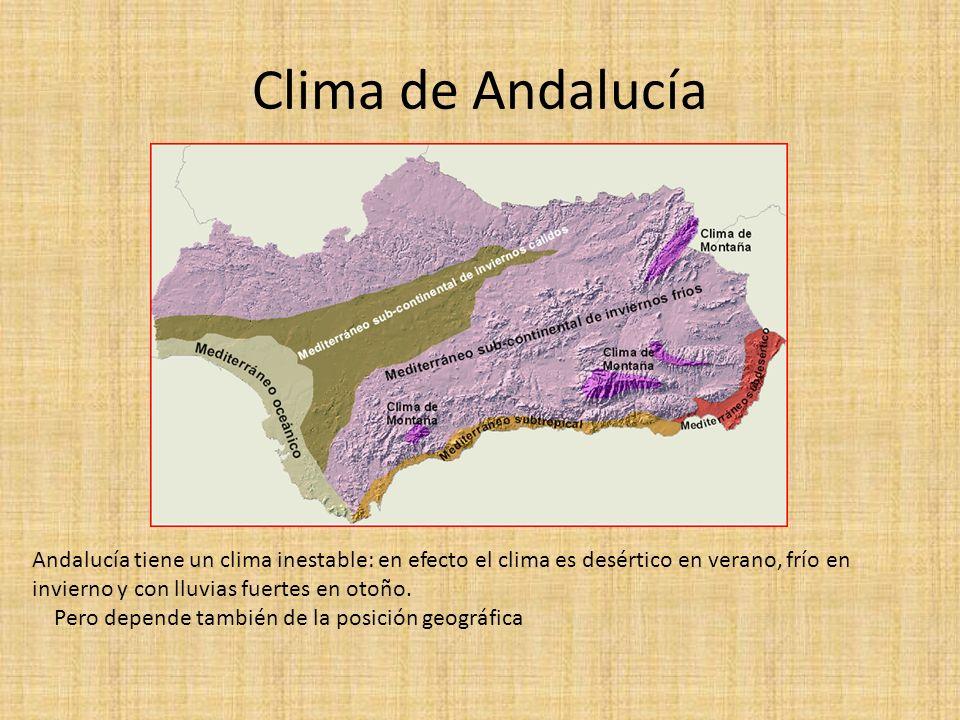 Clima de Andalucía Andalucía tiene un clima inestable: en efecto el clima es desértico en verano, frío en invierno y con lluvias fuertes en otoño.