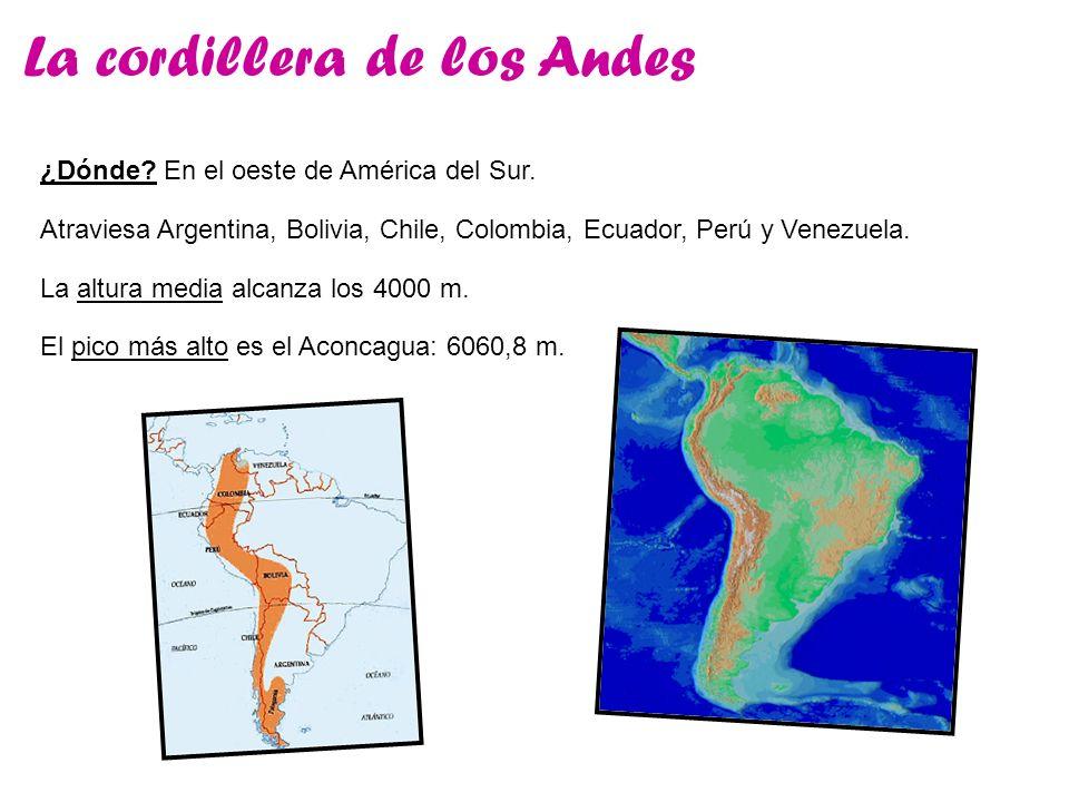 La cordillera de los Andes ¿Dónde? En el oeste de América del Sur. La altura media alcanza los 4000 m. Atraviesa Argentina, Bolivia, Chile, Colombia,