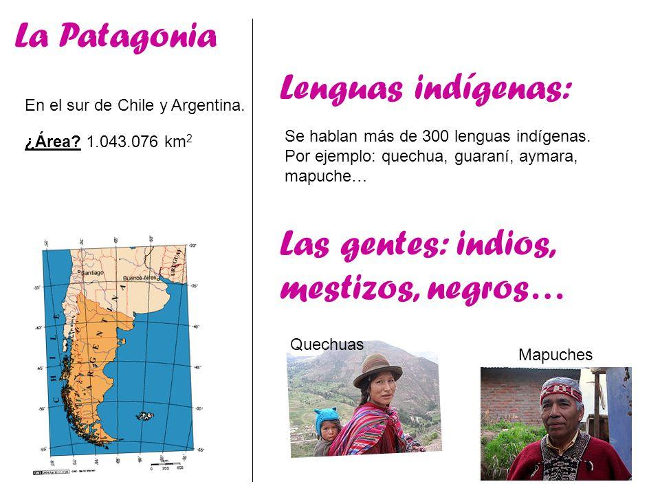 La Patagonia En el sur de Chile y Argentina. ¿Área? 1.043.076 km 2 Lenguas indígenas: Se hablan más de 300 lenguas indígenas. Por ejemplo: quechua, gu