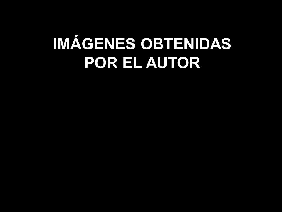 IMÁGENES OBTENIDAS POR EL AUTOR