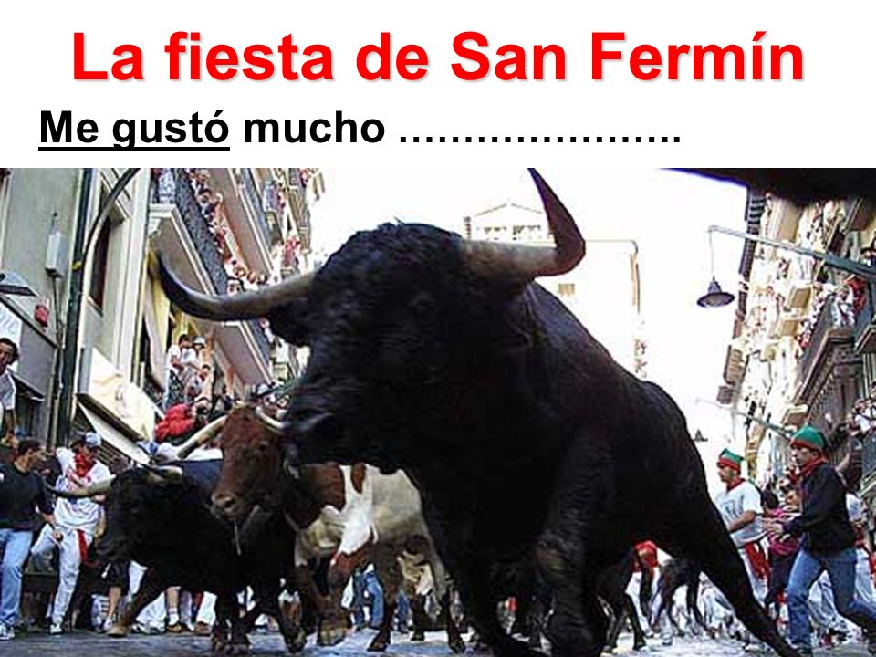 La fiesta de San Fermín Me gustó mucho ………………….