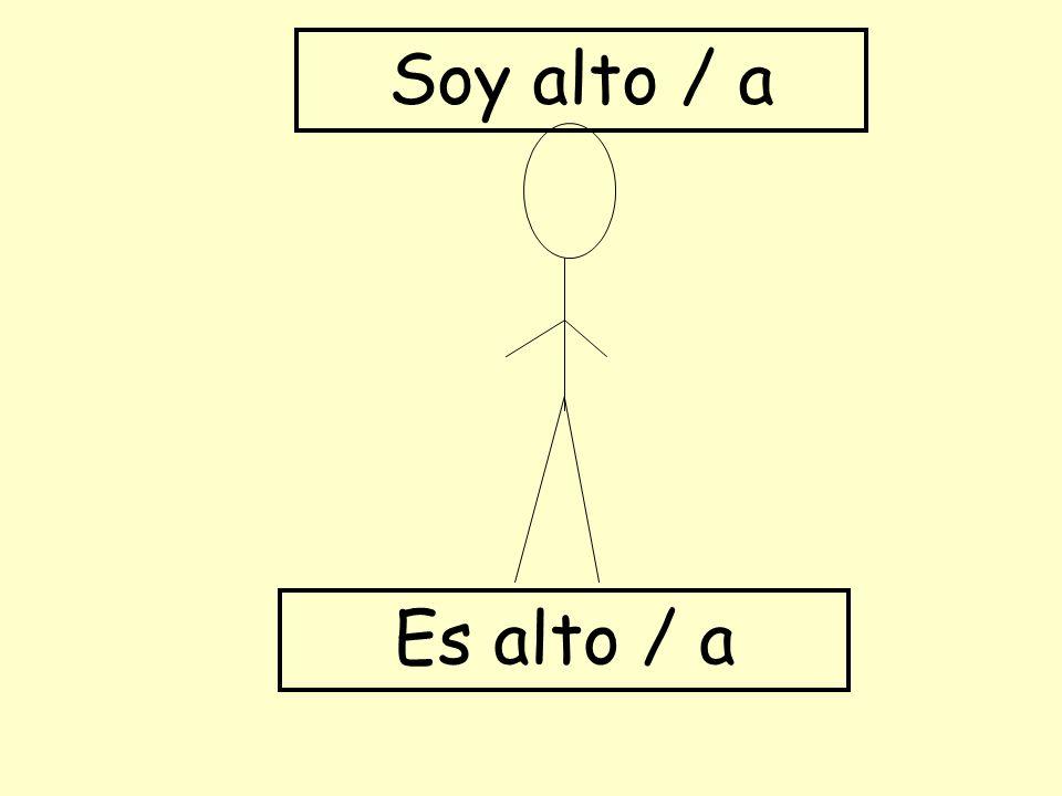 Es alto / a Soy alto / a
