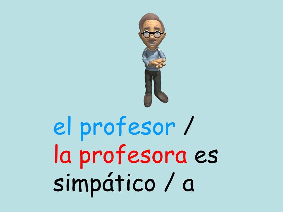 el profesor / la profesora es simpático / a