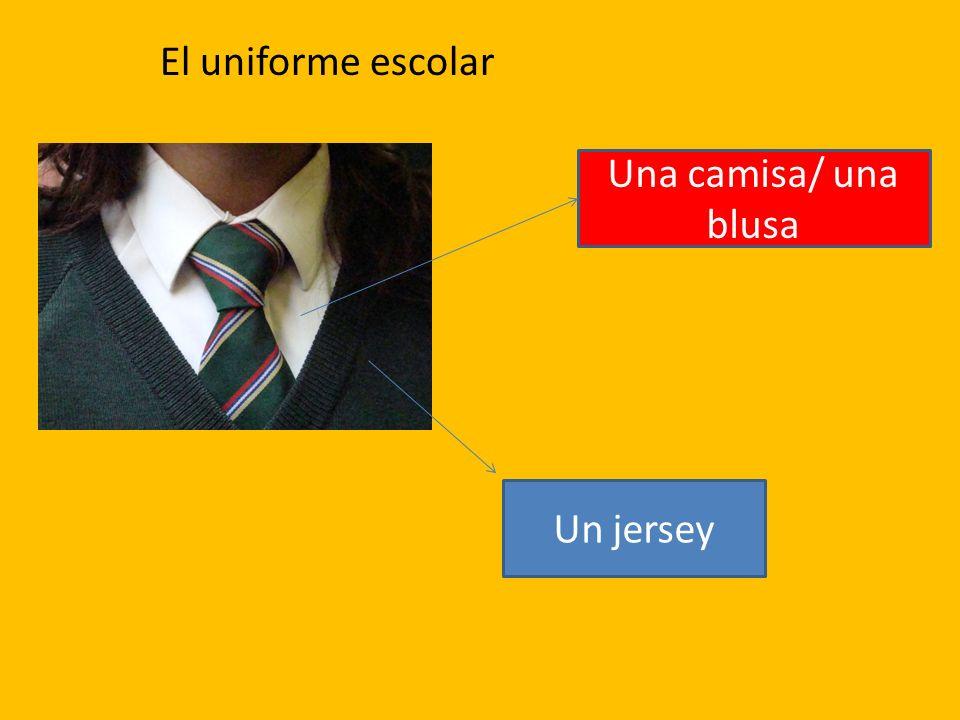 Una camisa/ una blusa Un jersey El uniforme escolar
