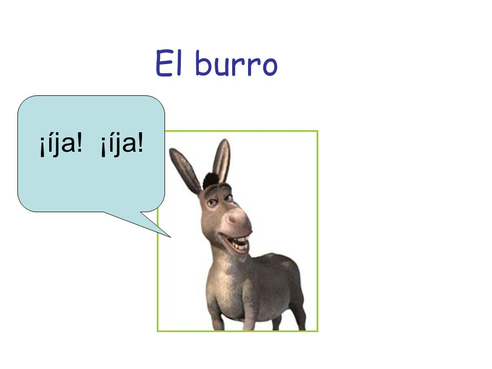 El burro ¡íja!