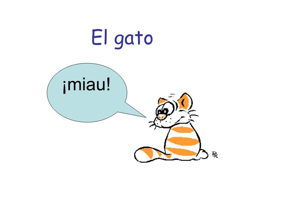 El gato ¡miau!