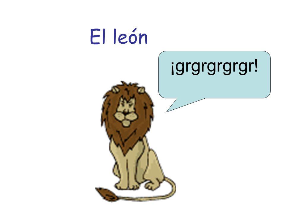 El león ¡grgrgrgrgr!