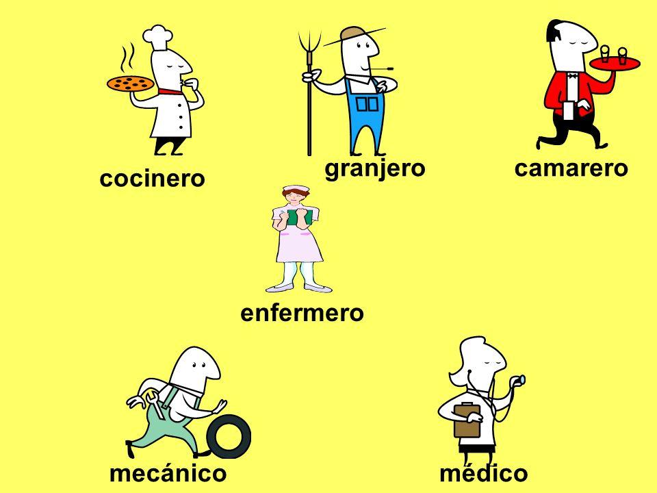 médico / a