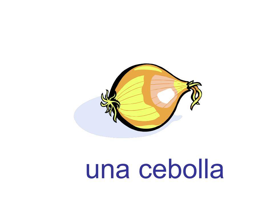una cebolla