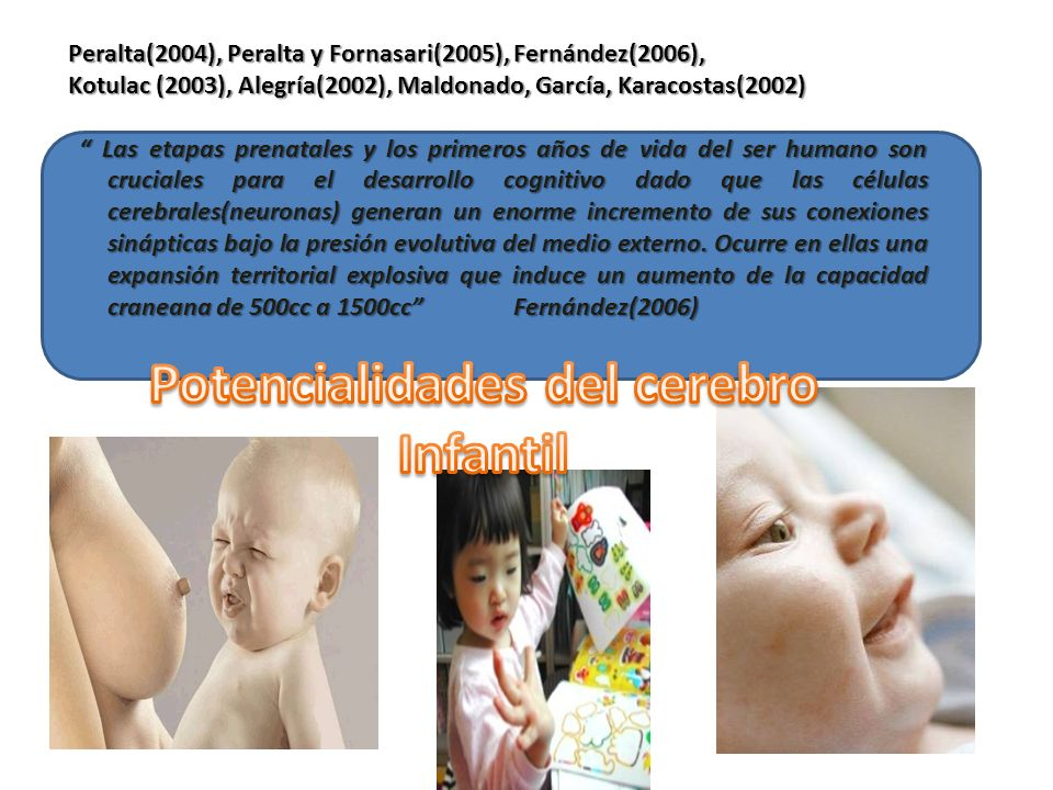 Peralta(2004), Peralta y Fornasari(2005), Fernández(2006), Kotulac (2003), Alegría(2002), Maldonado, García, Karacostas(2002) Las etapas prenatales y
