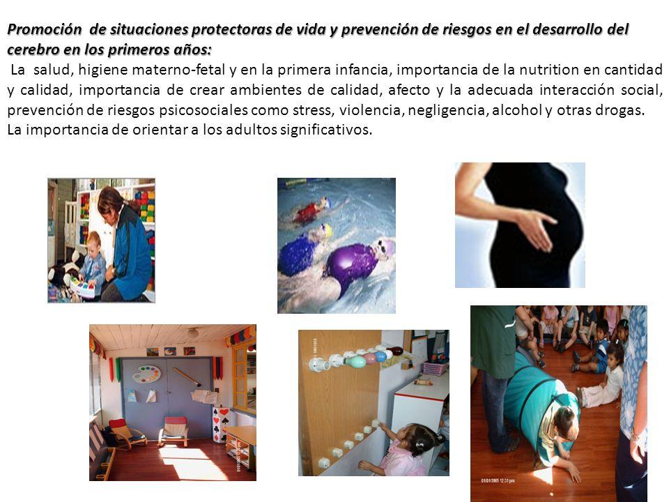 Promoción de situaciones protectoras de vida y prevención de riesgos en el desarrollo del cerebro en los primeros años: La salud, higiene materno-feta