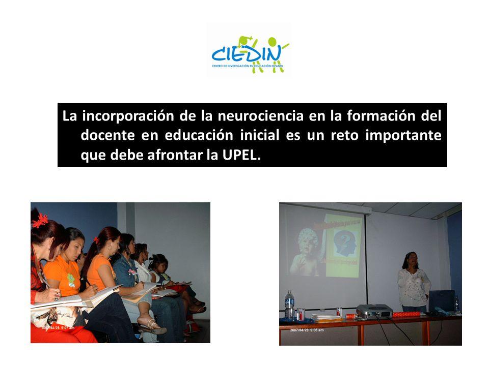 La incorporación de la neurociencia en la formación del docente en educación inicial es un reto importante que debe afrontar la UPEL.