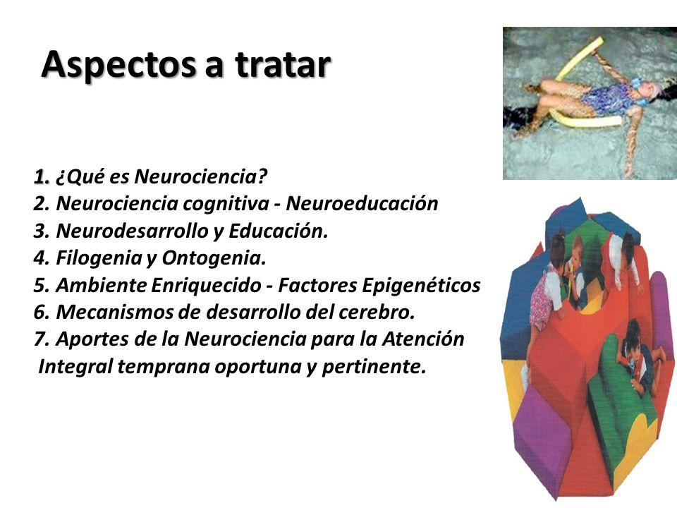 Aspectos a tratar 1. 1. ¿Qué es Neurociencia? 2. Neurociencia cognitiva - Neuroeducación 3. Neurodesarrollo y Educación. 4. Filogenia y Ontogenia. 5.