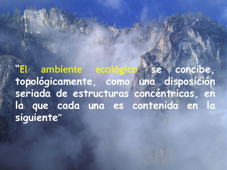 . El ambiente ecológico se concibe, topológicamente, como una disposición seriada de estructuras concéntricas, en la que cada una es contenida en la s
