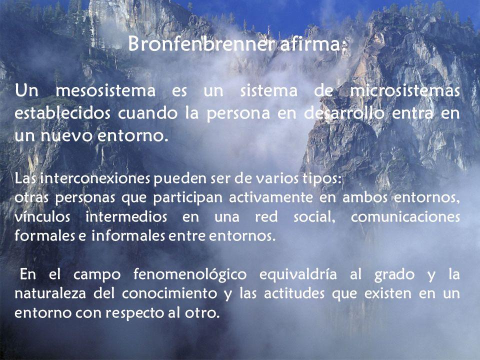 Bronfenbrenner afirma: Un mesosistema es un sistema de microsistemas establecidos cuando la persona en desarrollo entra en un nuevo entorno. Las inter