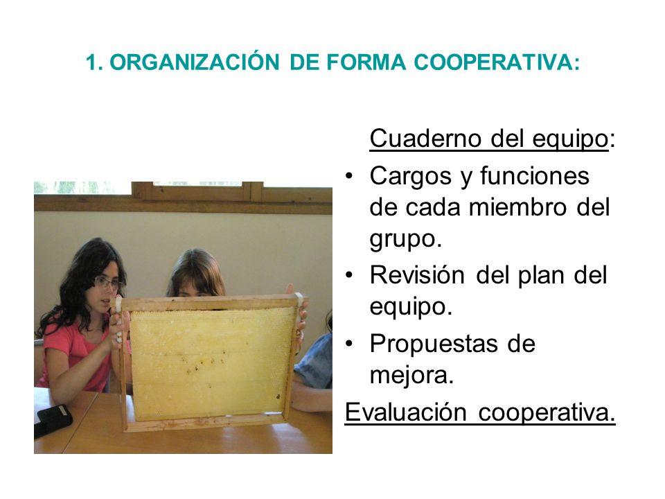 1. ORGANIZACIÓN DE FORMA COOPERATIVA: Cuaderno del equipo: Cargos y funciones de cada miembro del grupo. Revisión del plan del equipo. Propuestas de m