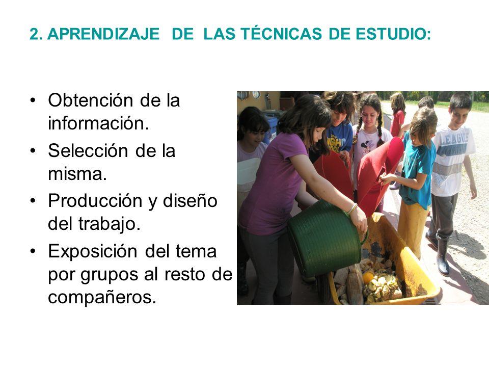 2. APRENDIZAJE DE LAS TÉCNICAS DE ESTUDIO: Obtención de la información. Selección de la misma. Producción y diseño del trabajo. Exposición del tema po