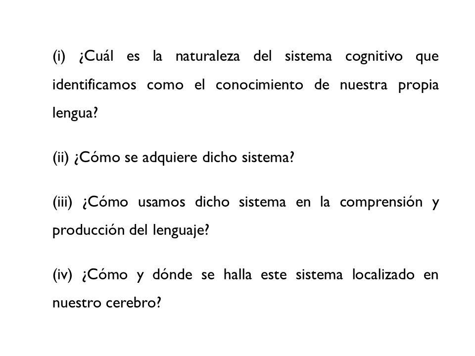 (i) ¿Cuál es la naturaleza del sistema cognitivo que identificamos como el conocimiento de nuestra propia lengua? (ii) ¿Cómo se adquiere dicho sistema