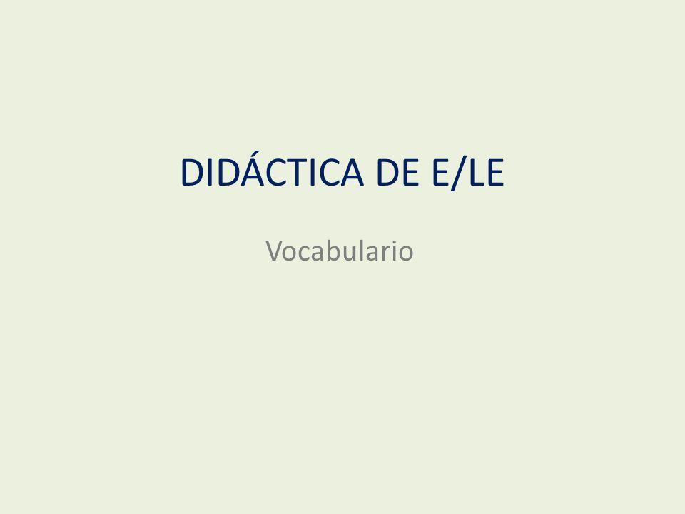 DIDÁCTICA DE E/LE Vocabulario