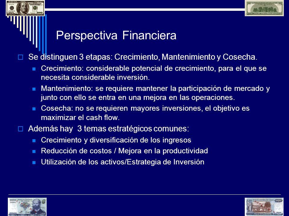 Perspectiva Financiera Se distinguen 3 etapas: Crecimiento, Mantenimiento y Cosecha. Crecimiento: considerable potencial de crecimiento, para el que s