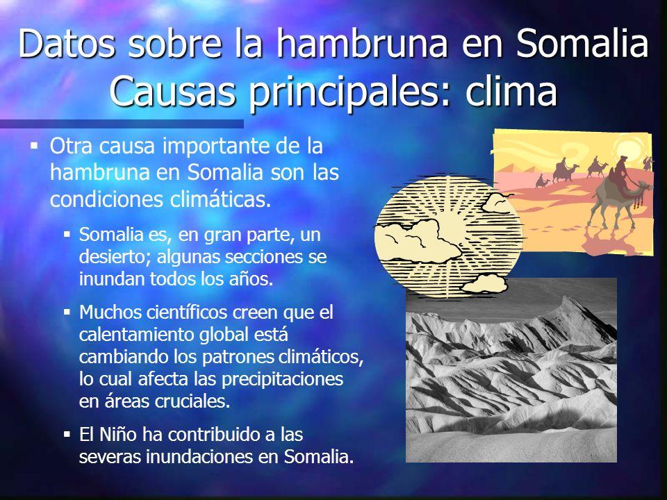 Datos sobre la hambruna en Somalia Causas principales: clima Otra causa importante de la hambruna en Somalia son las condiciones climáticas. Somalia e