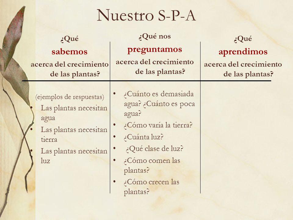 Nuestro S-P-A ¿Qué sabemos acerca del crecimiento de las plantas? (ejemplos de respuestas) Las plantas necesitan agua Las plantas necesitan tierra Las