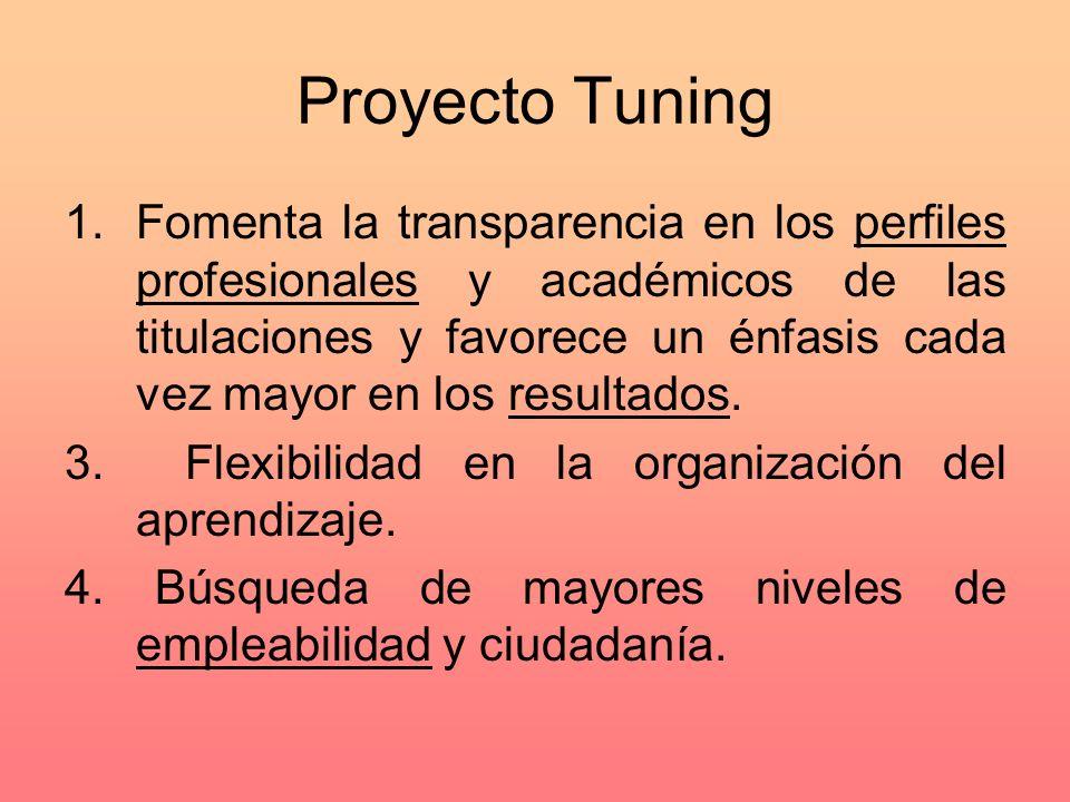 Proyecto Tuning 1.Fomenta la transparencia en los perfiles profesionales y académicos de las titulaciones y favorece un énfasis cada vez mayor en los resultados.