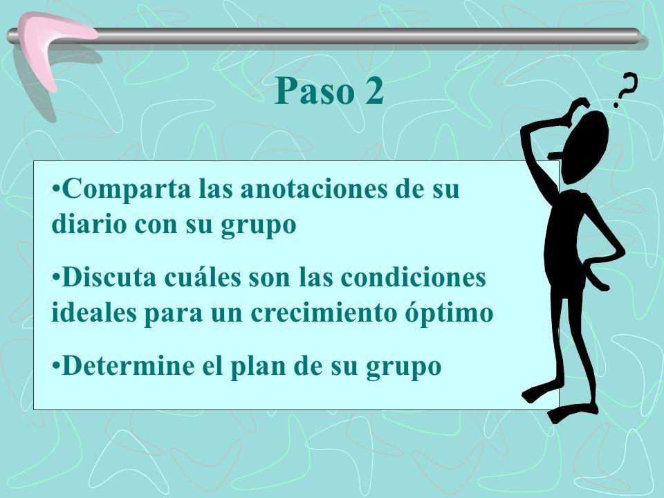 Paso 2 Comparta las anotaciones de su diario con su grupo Discuta cuáles son las condiciones ideales para un crecimiento óptimo Determine el plan de su grupo