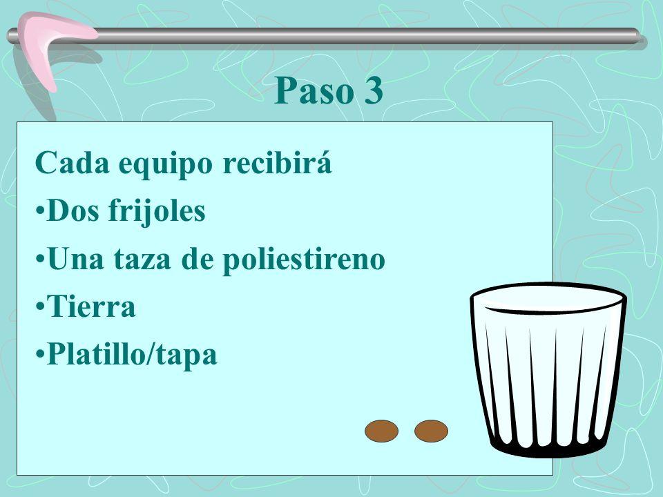 Cada equipo recibirá Dos frijoles Una taza de poliestireno Tierra Platillo/tapa Paso 3
