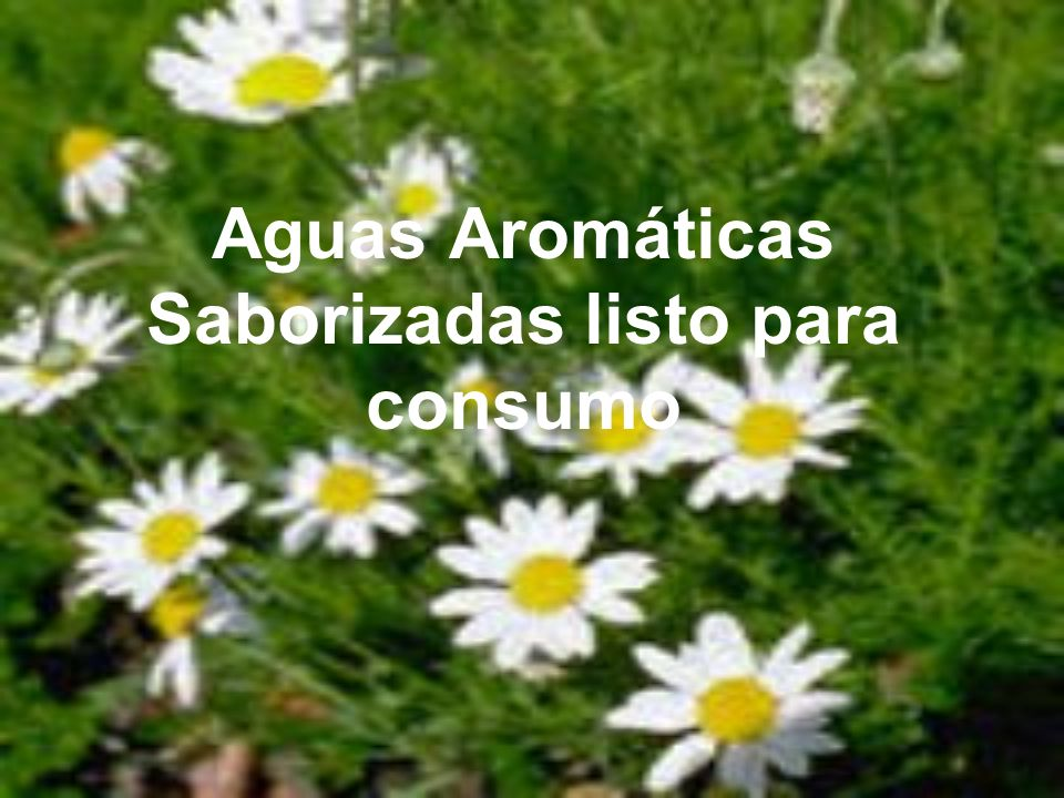 Aguas Aromáticas Saborizadas listo para consumo
