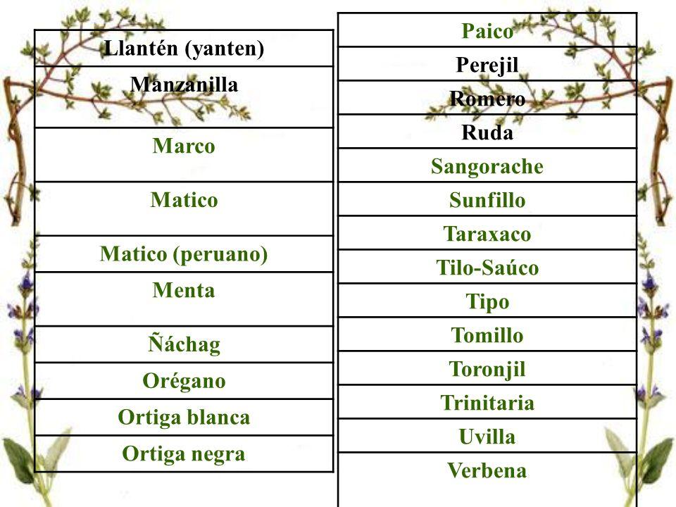 Mercado El 80% de los pobladores del mundo, es decir que más de los 2/3 de la población mundial, 4 mil millones de personas recurre a las hierbas medicinales para su alimentación y para curar sus dolencias sicofísicas.