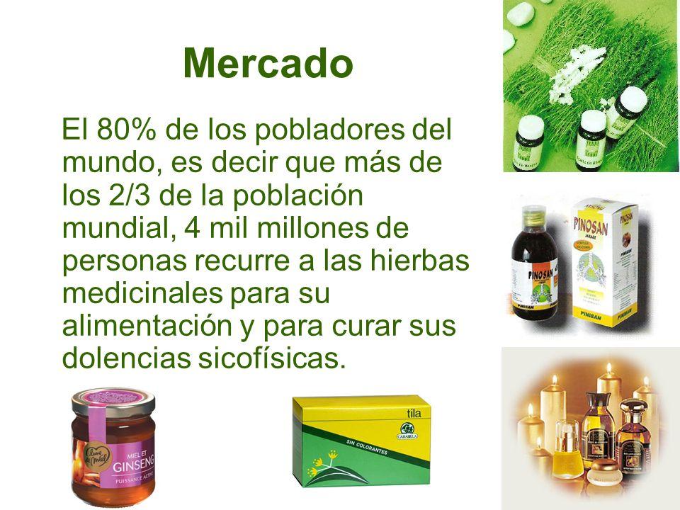 Formas de Preparar y Usar las Plantas Medicinales Como Té o infusión Tizana Maceración Cruda Jugos Ensaladas Cataplasmas
