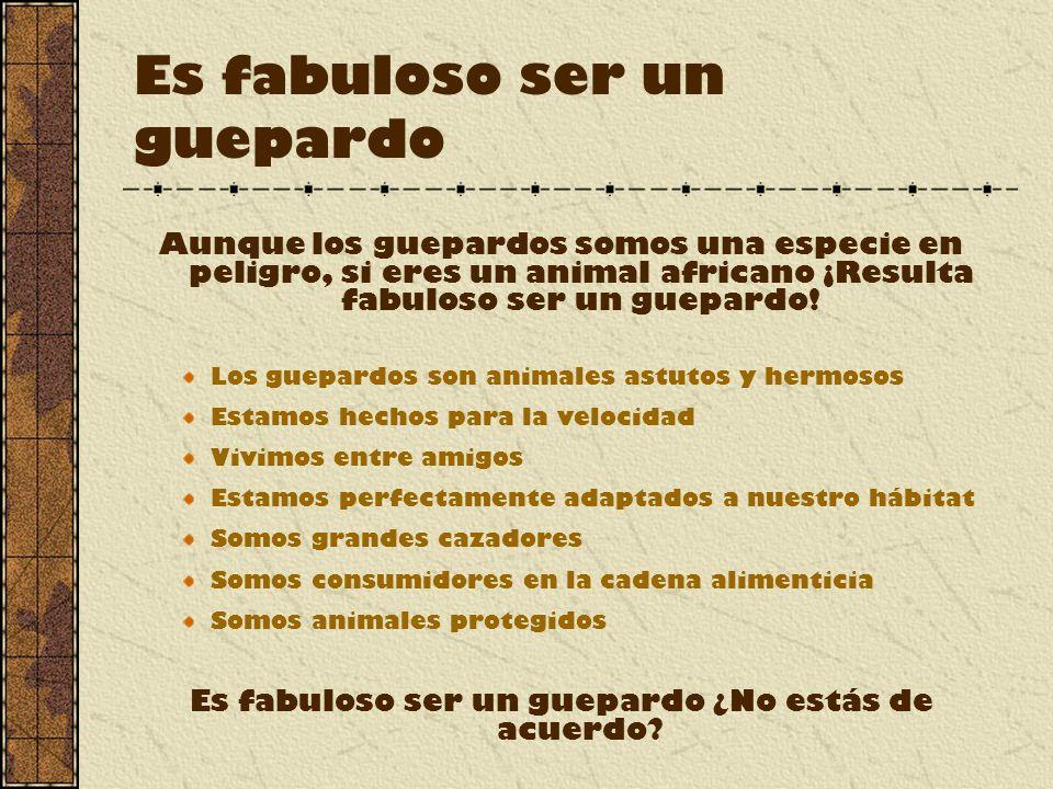 Es fabuloso ser un guepardo Aunque los guepardos somos una especie en peligro, si eres un animal africano ¡Resulta fabuloso ser un guepardo.
