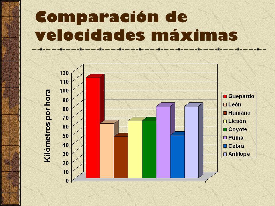 Comparación de velocidades máximas Kilómetros por hora