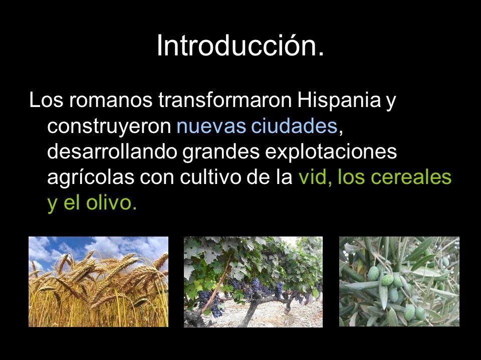 Los romanos transformaron Hispania y construyeron nuevas ciudades, desarrollando grandes explotaciones agrícolas con cultivo de la vid, los cereales y