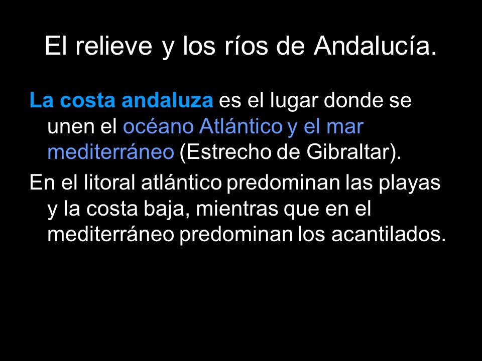 La costa andaluza es el lugar donde se unen el océano Atlántico y el mar mediterráneo (Estrecho de Gibraltar).