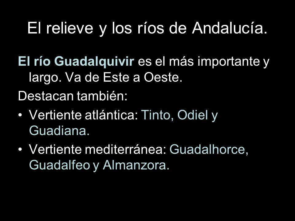 El río Guadalquivir es el más importante y largo.Va de Este a Oeste.