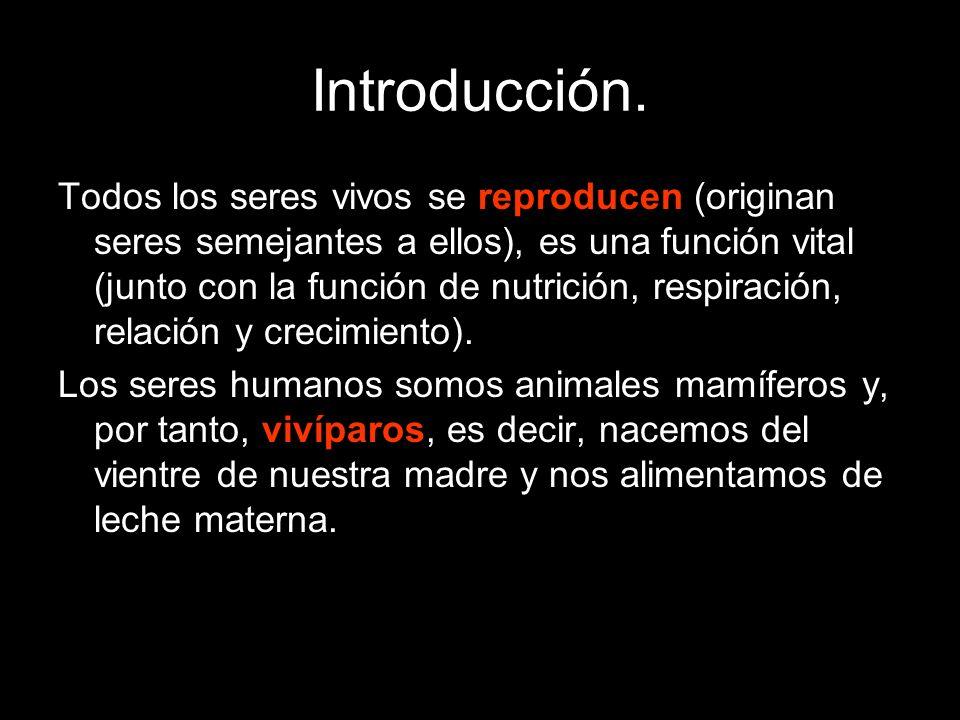 Introducción. Todos los seres vivos se reproducen (originan seres semejantes a ellos), es una función vital (junto con la función de nutrición, respir
