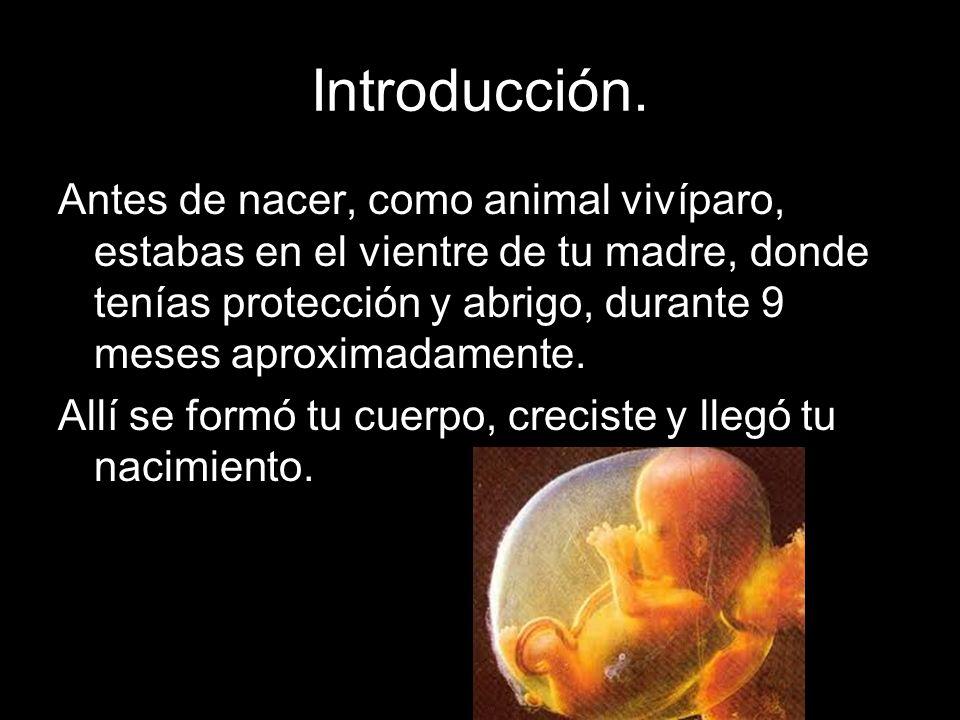 Introducción. Antes de nacer, como animal vivíparo, estabas en el vientre de tu madre, donde tenías protección y abrigo, durante 9 meses aproximadamen