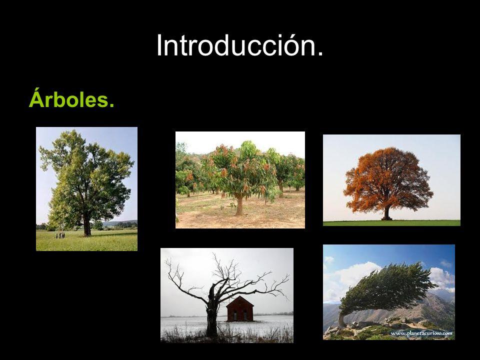 Introducción. Árboles.