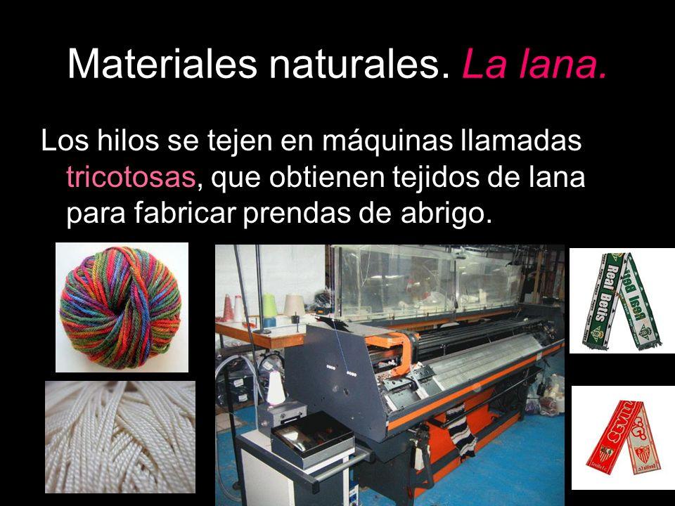 Los hilos se tejen en máquinas llamadas tricotosas, que obtienen tejidos de lana para fabricar prendas de abrigo.