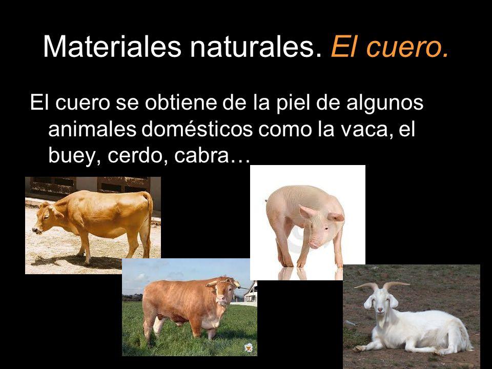 Materiales naturales. El cuero. El cuero se obtiene de la piel de algunos animales domésticos como la vaca, el buey, cerdo, cabra…