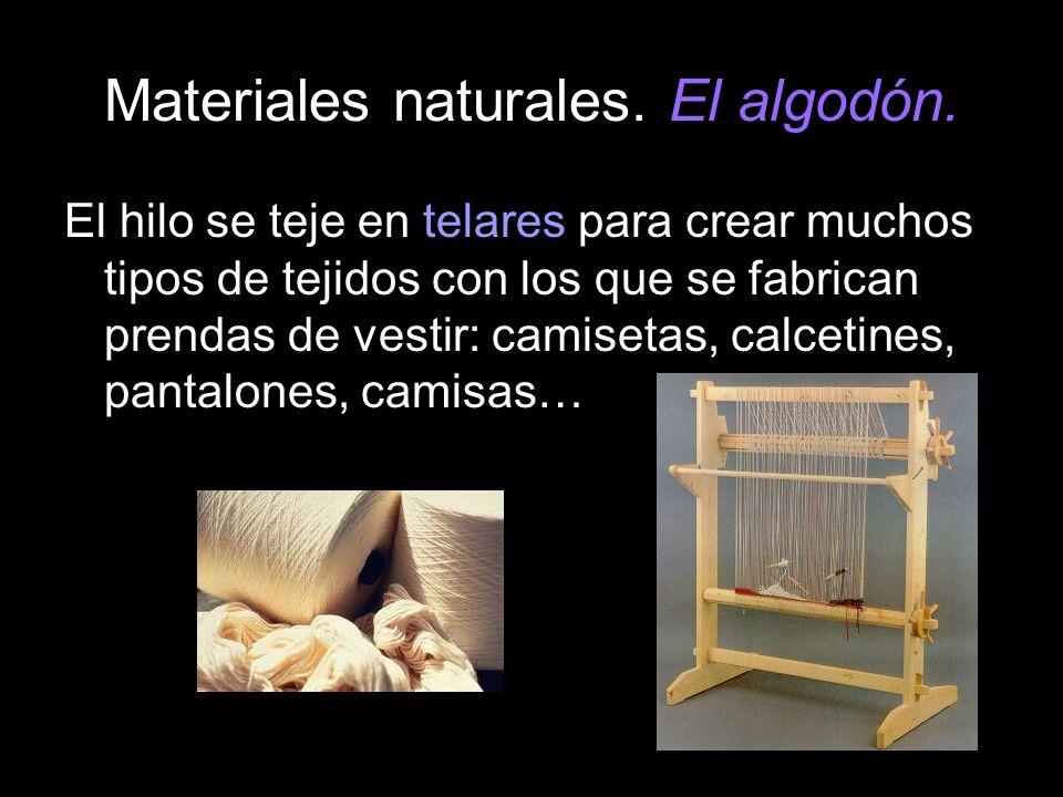 Materiales naturales. El algodón. El hilo se teje en telares para crear muchos tipos de tejidos con los que se fabrican prendas de vestir: camisetas,