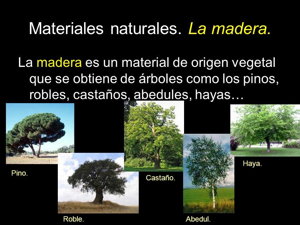 Materiales naturales. La madera. La madera es un material de origen vegetal que se obtiene de árboles como los pinos, robles, castaños, abedules, haya