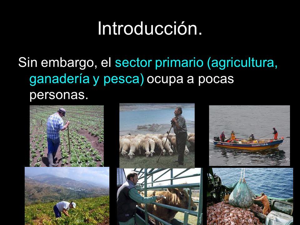 Introducción. Sin embargo, el sector primario (agricultura, ganadería y pesca) ocupa a pocas personas.