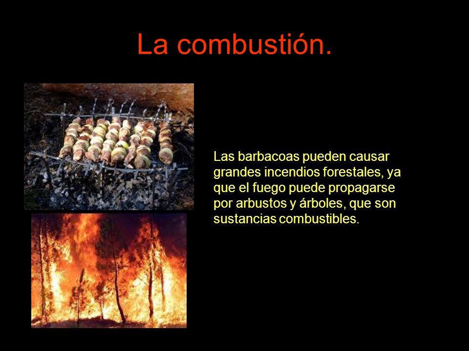 La combustión. Las barbacoas pueden causar grandes incendios forestales, ya que el fuego puede propagarse por arbustos y árboles, que son sustancias c