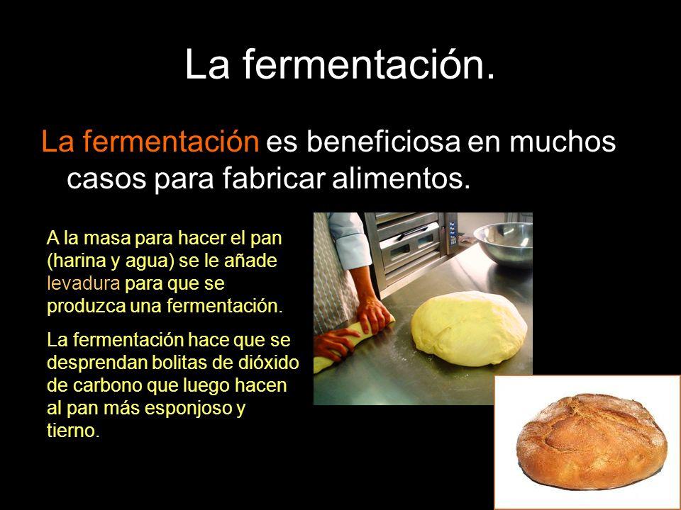 La fermentación. La fermentación es beneficiosa en muchos casos para fabricar alimentos. A la masa para hacer el pan (harina y agua) se le añade levad