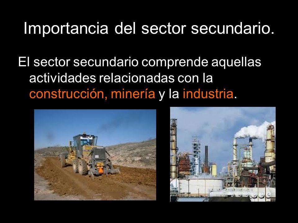 Importancia del sector secundario. El sector secundario comprende aquellas actividades relacionadas con la construcción, minería y la industria.