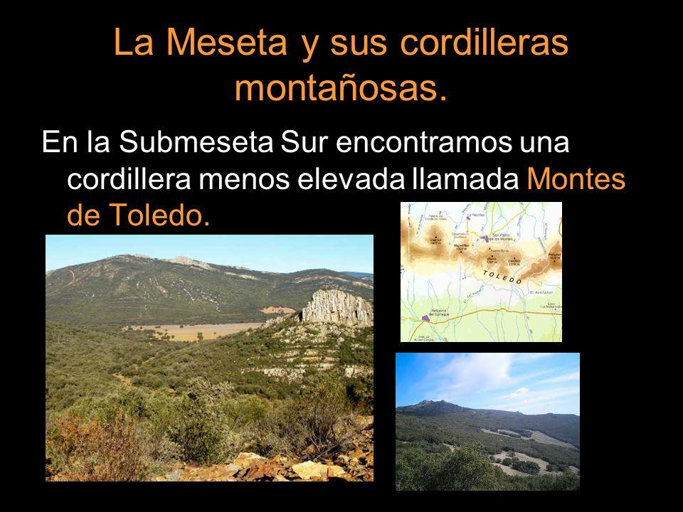En la Submeseta Sur encontramos una cordillera menos elevada llamada Montes de Toledo.
